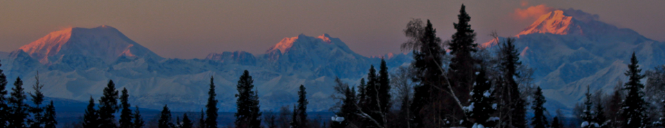 View to Denali